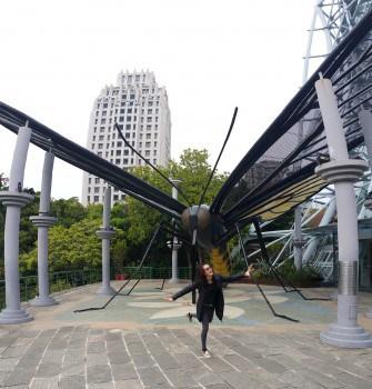 taiwan 00 (18)