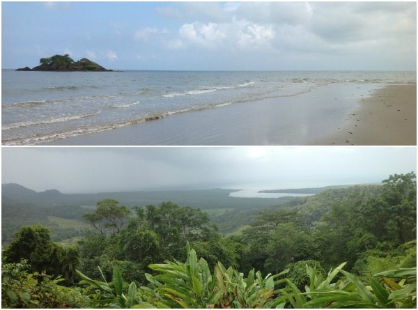 Port Douglas Collage 2