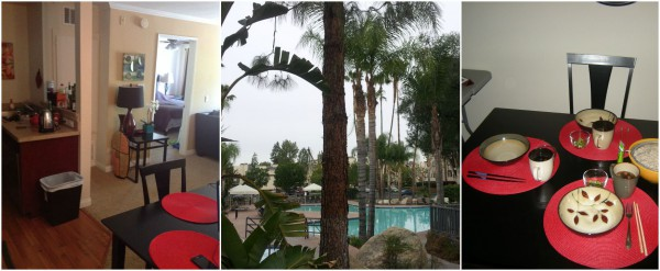 Los Angeles apartment 3