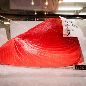 Tsukiji Fish Market auction guide and why you should skip it.